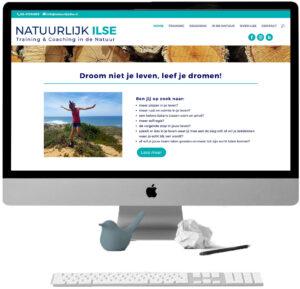 basiscursus websites maken